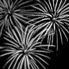 Fireworks-Med3.jpg