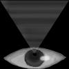 eye%20icon%20100.jpg