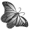 pretty%20buterfly%20100.jpg