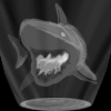 shark%20hologram.jpg